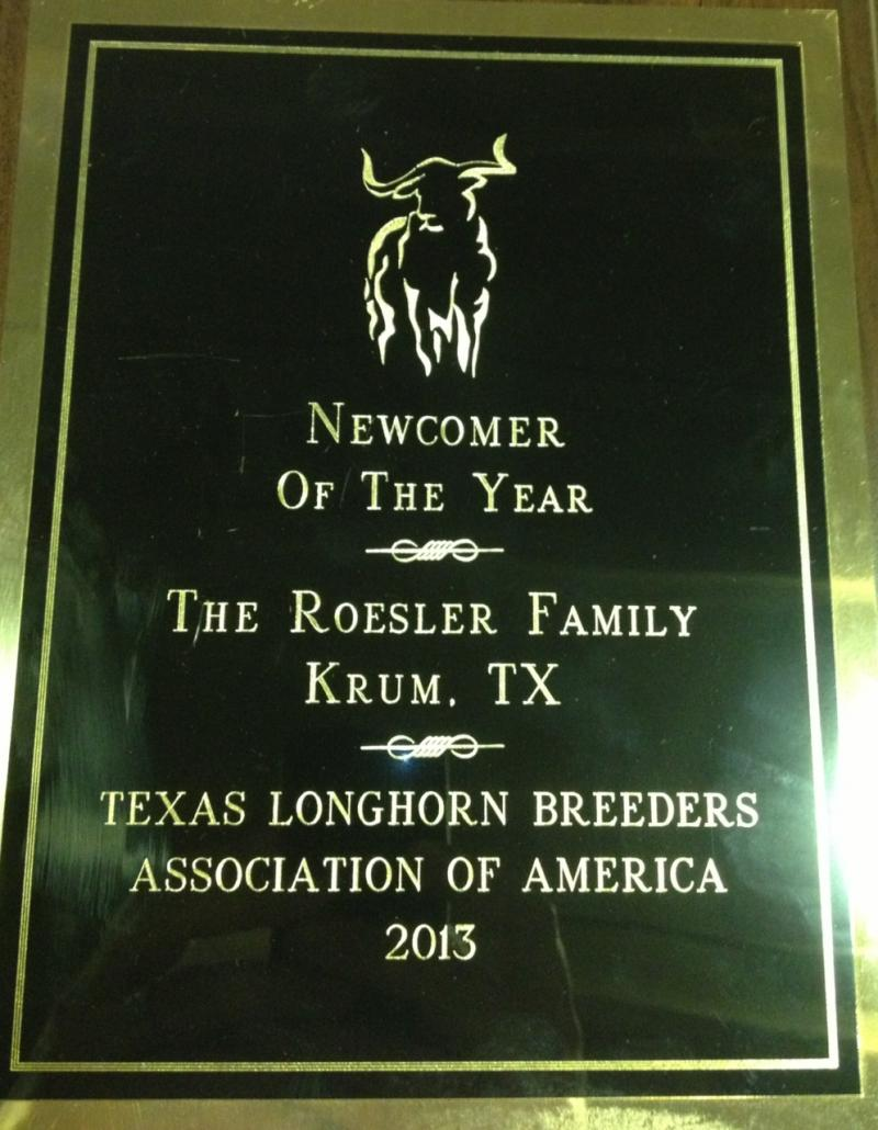 TLBAA Newcomer of the Year!