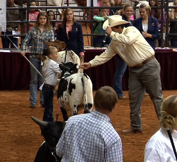 Avery winning Reserve Junior Heifer with Buttermilk