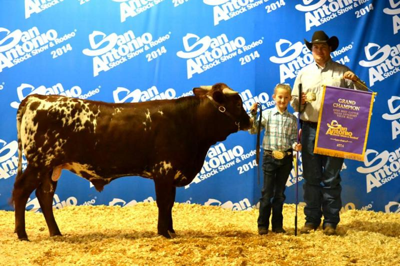 Mr B was Grand Champion bull at the SALE 2014