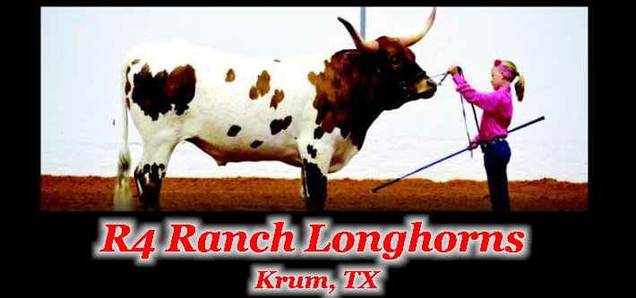 Welcome to R4 Ranch Longhorns